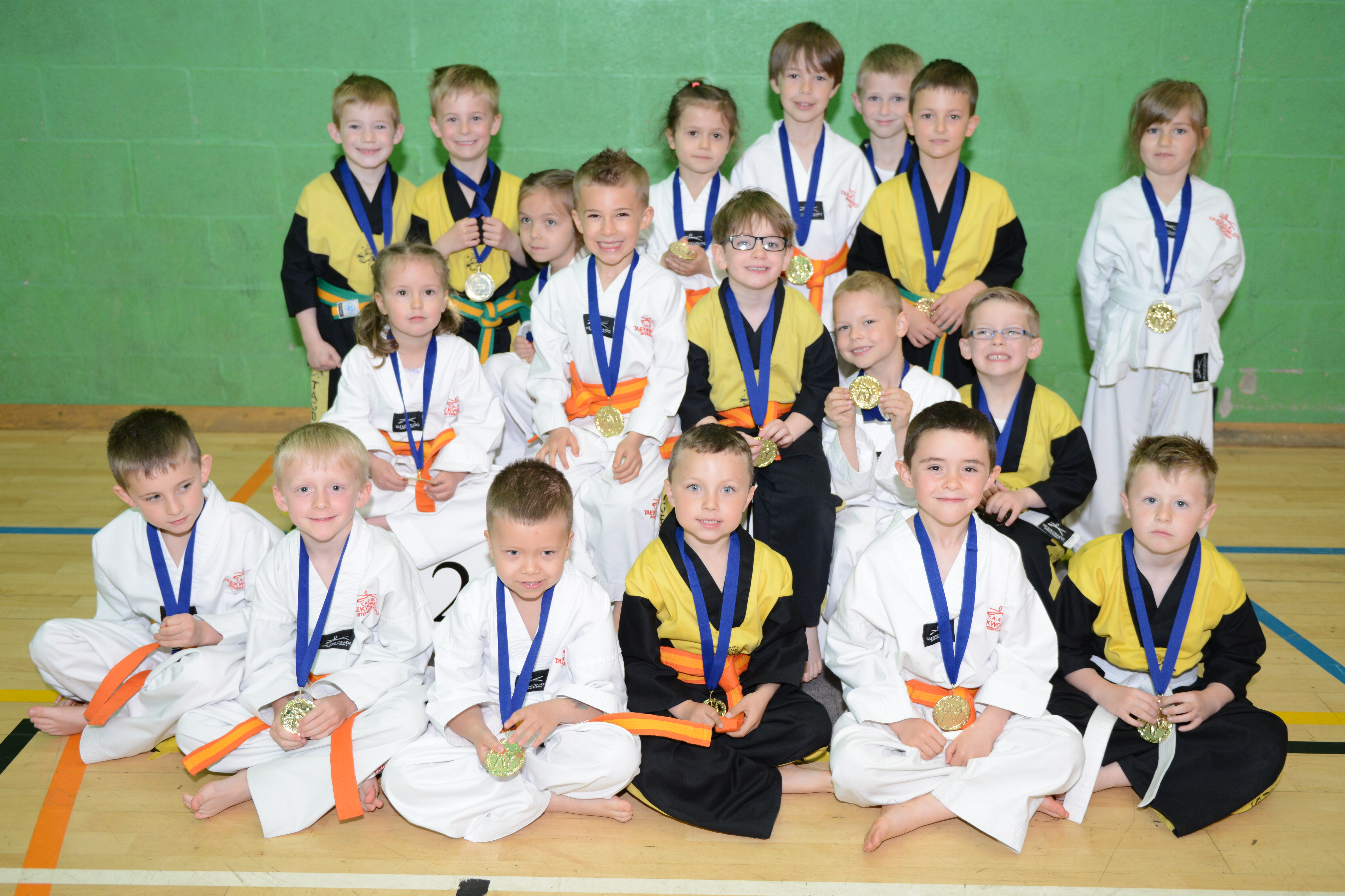 Lincolnshire Tae Kwon-do Championships